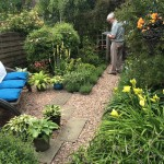 Winner of Category 5 for Domestic Small Garden: Paula Fletcher, West Street